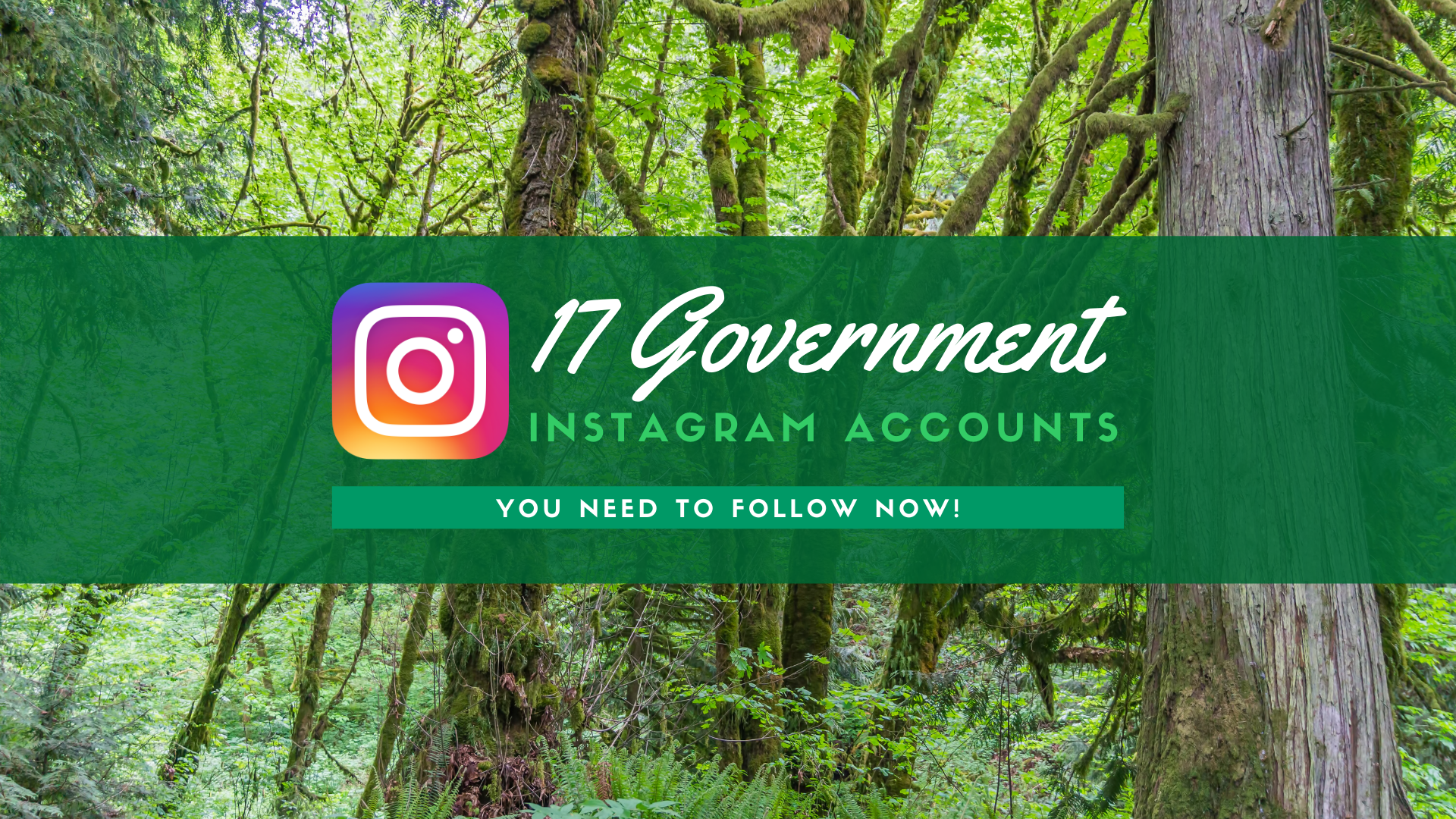 17 Government Instagram Accounts You Need to Follow Now